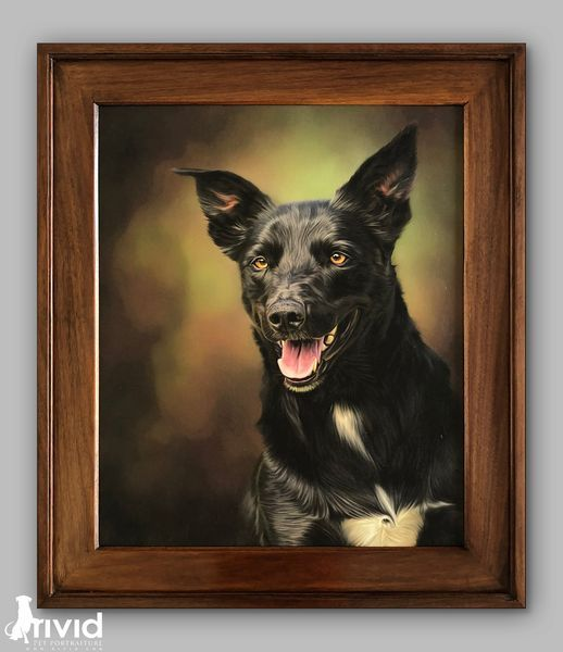 David Oakley - More than animal portraits - Part 1